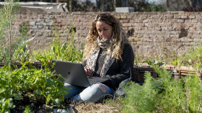 Curso online de huerta orgánica