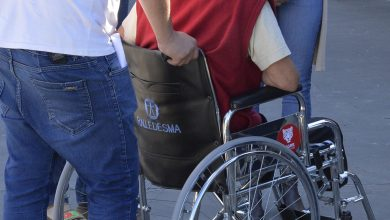 Certificado Único de Discapacidad